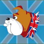 british_buldog